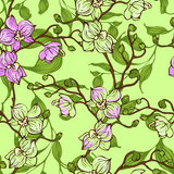Vector Seamless Pattern With Pink And Green Orchid Flowers
