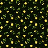 Seamless pattern with dandelion flowers. Vector illustration. Royalty Free Stock Image