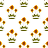 Vector seamless pattern with yellow sunflowers on white background. Royalty Free Stock Photos