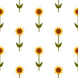 Vector seamless pattern with yellow sunflowers on white background. Stock Image
