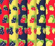 Vector seamless patterns with currant Stock Photography