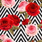 Seamless pattern with roses ground Stock Photos