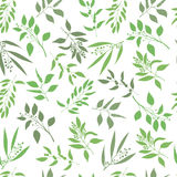 Vector seamless plant background. Endless pattern with green twigs and leaves silhouette. Stock Image