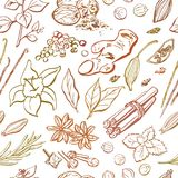 Vector seamless repetitive pattern of spices and herbs. Hand drawn elements in brown, orange, beige colors on white background . Wrapping paper, package, print stock illustration