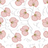 Vector seamless retro pattern, Orchidaceae. Royalty Free Stock Images