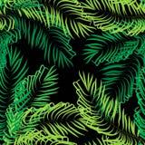 Vector seamless summer palm leaves on black background stock illustration