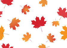 Vector seamless texture with autumn leaves. Seamless texture with autumn leaves - vector Stock Images