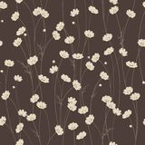 Vector seamless texture with chamomile flowers Stock Image