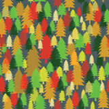 Vector seamless texture with colorful fir-trees Stock Image