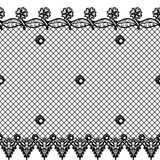 Vector seamless texture with lace design and borders.    Royalty Free Stock Photos