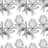 Vector seamless texture. Vector seamless pattern with flowers, black and white Stock Images