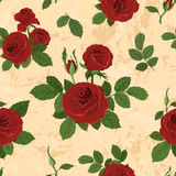 Vector seamless tiling pattern with roses Royalty Free Stock Image