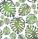 Vector seamless trendy pattern with tropical leaves on the trnsparent background vector illustration
