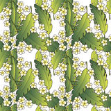 Pattern with palm and flowers Stock Photo