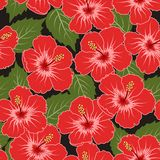 Vector seamless tropical pattern royalty free stock image