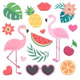 Vector seamless tropical pattern. Royalty Free Stock Photos