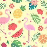 Vector seamless tropical pattern. Royalty Free Stock Photo