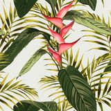 Vector seamless tropical pattern, tropic foliage, with palm leaves, bird of paradise flower, heliconia in bloom. Modern bright summer spring print design for stock illustration
