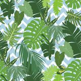 Vector seamless tropical pattern. With bright exotic foliage over blue zig zag stripes. Vector illustration Stock Photography