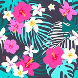 Vector seamless tropical pattern, vivid tropic foliage, with monstera leaf, palm leaves, plumeria flowers, hibiscus in bloom. Mode. Vector seamless tropical royalty free illustration
