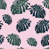 Vector seamless tropical pattern, vivid tropic foliage, with monstera leaves. Pink background. Vintage style stock illustration