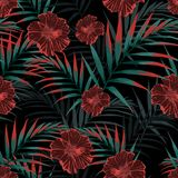 Vector seamless tropical pattern, vivid tropic foliage, with palm leaves, tropical hibiscus flower in bloom. Vintage background. Night tropical backdrop Stock Images