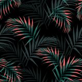 Vector seamless tropical pattern, vivid tropic foliage, with palm leaves. Modern bright summer print design. Black background stock illustration