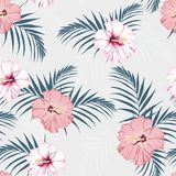 Vector seamless tropical pattern, vivid tropic foliage, with palm leaves, tropical pink hibiscus flower in bloom. Modern bright su. Mmer print design. Vintage royalty free illustration