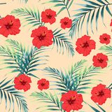Vector seamless tropical pattern, vivid tropic foliage, with palm leaves, tropical red hibiscus flower in bloom. Vintage background Royalty Free Stock Photo