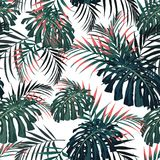 Vector seamless tropical pattern, vivid tropic foliage, with palm monstera leaves. Modern bright summer print design. White background. Vintage style royalty free illustration