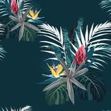 Vector seamless tropical pattern, vivid tropic foliage, with palm monstera leaves and protea, strelitzia flowers. Modern bright summer print design. Vintage vector illustration