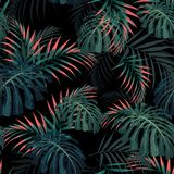 Vector seamless tropical pattern, vivid tropic foliage, with palm monstera leaves. Modern bright summer print design. Black background. Vintage style stock illustration