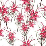 Vector seamless tropical pattern, vivid tropic foliage, with red protea flowers in bloom. Modern bright summer print design. royalty free illustration