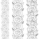 Vector seamless vertical border with outline rose flower and foliage in black isolated on white background. Floral pattern. Royalty Free Stock Images