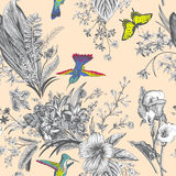 Vector seamless vintage floral pattern. Exotic flowers and birds. Stock Image