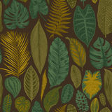 Vector seamless vintage floral pattern. Royalty Free Stock Image