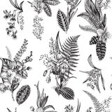 Vector seamless vintage floral pattern. Royalty Free Stock Photos