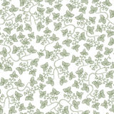 Vector seamless vintage floral pattern. Stylized silhouettes of grape leaves on a white background Stock Photography