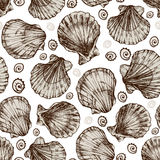 Vector seamless vintage sketch of seashells isolated on white background. Hand-drawn sea animals Royalty Free Stock Photography