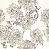 Vector seamless wallpaper pattern with rose flowers Stock Photography