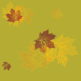 Vector seamless wallpaper. yellow maple leaves Stock Image