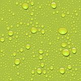 Vector. Seamless water drop texture Royalty Free Stock Image