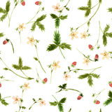 Vector seamless watercolor pattern Royalty Free Stock Images