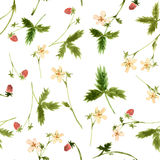 Vector seamless watercolor pattern Stock Image
