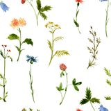 Vector seamless watercolor pattern Royalty Free Stock Photos