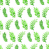 Vector seamless watercolour pattern. Nature background. Green watercolor leaves on white background Stock Image