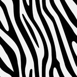 Vector seamless zebra texture royalty free stock image