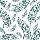 Vector seamlessbackground with  feathers Royalty Free Stock Photos