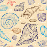 Vector seashalls seamless pattern Stock Images