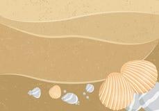 Vector seashells Stock Photo